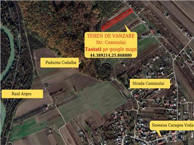 Teren de Vanzare Domnesti-Teghes
